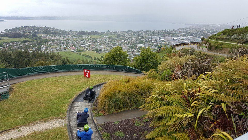 Luge at Skyline Park